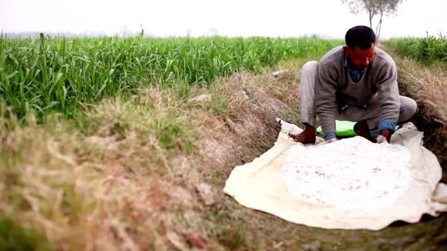 Farmer working in the field - video