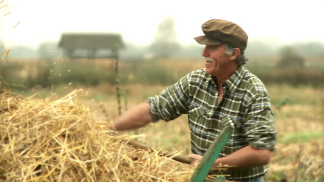 HD: Farmer Working video