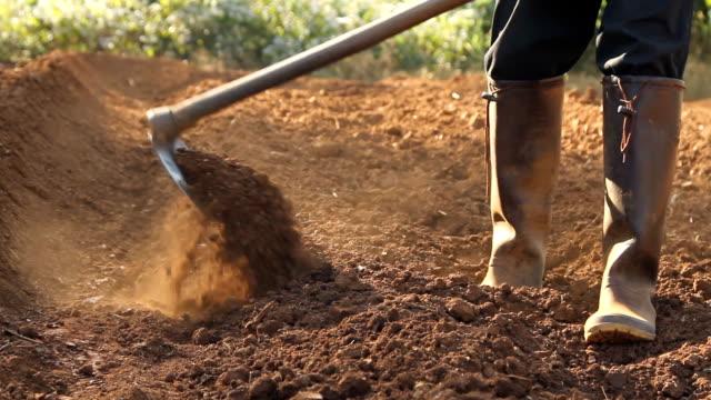 agricoltore di lavoro - attività agricola video stock e b–roll