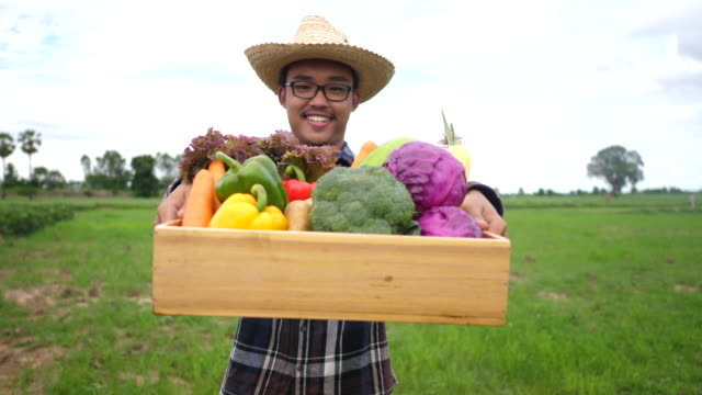 Farmers deliver non-toxic vegetables to customers in front of their farms. video