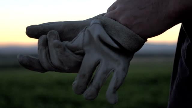 farmers gloves - rękawiczka filmów i materiałów b-roll