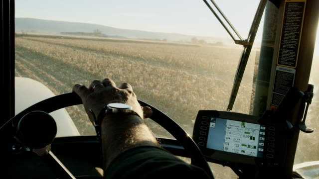 vídeos de stock e filmes b-roll de a farmer's hand with a wrist watch steers a tractor's steering wheel from the inside of the tractor cab as he navigates through a corn field using gps - farmer