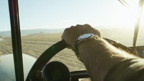 vídeos de stock e filmes b-roll de a farmer's hand with a wrist watch steers a tractor's steering wheel from inside of a tractor cab as he navigates through a corn field - agricultor