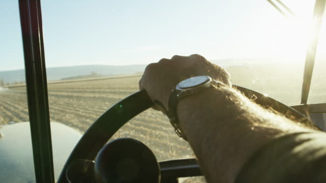 vídeos de stock e filmes b-roll de a farmer's hand with a wrist watch steers a tractor's steering wheel from inside of a tractor cab as he navigates through a corn field - colheita