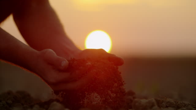 SLO MO Farmer's hands scooping dirt on a field at sunset video