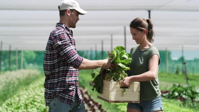 vídeos de stock e filmes b-roll de farming is second nature to us - engradado