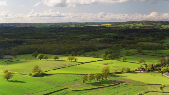 farmland in the south downs - drone shot - south downs video stock e b–roll