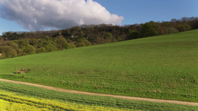 farms and woodland in west sussex, england - drone shot - paesaggio collinare video stock e b–roll