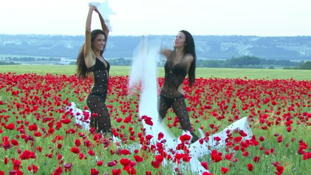 vídeos y material grabado en eventos de stock de modelo de moda en el campo de amapolas - ripped paper