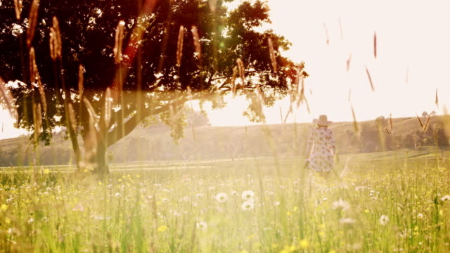 DS Fashionable woman with sun hat walking to a tree in a meadow Dolly wide shot of a woman with a sun hat approaching to a tree in the middle of the meadow on a beautiful sunny day. Slovenia. Shoot in 8K resolution. grass area stock videos & royalty-free footage