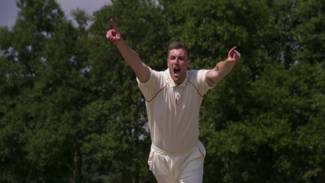 A fast bowler playing cricket bowls and celebrates. video