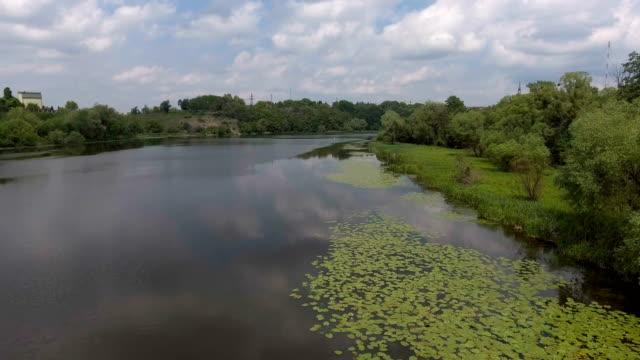 AERIAL: Fast flight down the river - vídeo