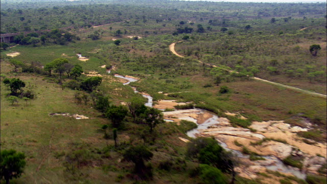 Fast Flight Low Over the Kruger National Park  - Aerial View - Mpumalanga,  South Africa This clip was filmed by Skyworks on HDCAM SR 4:4:4 using the Cineflex gimbal. Mpumalanga,   South Africa national landmark stock videos & royalty-free footage