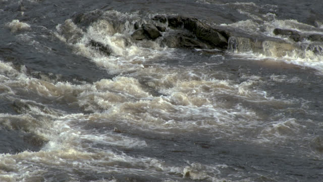 Fast flowing river in south west Scotland 4k footage shot at 50fps and interpreted at 25fps to give slower motion dumfries and galloway stock videos & royalty-free footage