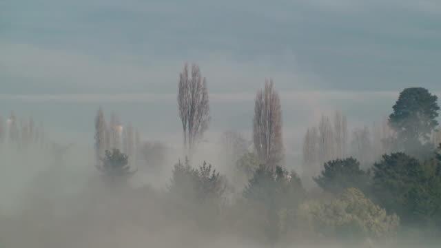 Fast Mist video