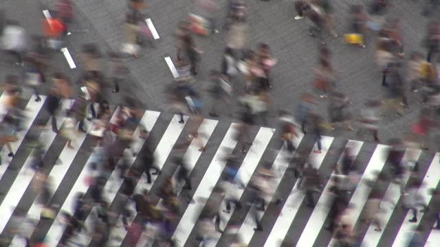 zeitraffer von shibuya fußgängerüberweg am tag, tokio, japan - überweg warnschild stock-videos und b-roll-filmmaterial