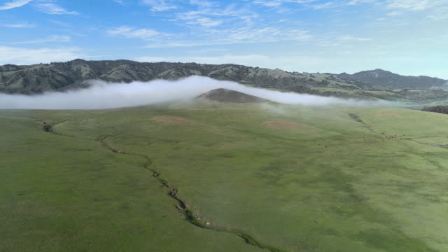 Fast moving low cloud coming from the Pacific Ocean around the hills in San Simeon, California, nearby Cabrillo Highway, and Arroyo Del Oso. The windy sunny spring day. Aerial drone video with the panning and descending cinematic camera motion.