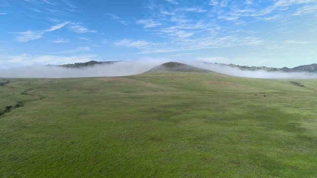 Fast moving low cloud coming from the Pacific Ocean around the hills in San Simeon, California, nearby Cabrillo Highway, and Arroyo Del Oso. The windy sunny spring day. Aerial drone video with the slow forward camera motion.
