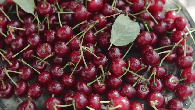 Fast rotating bowl of sweet cherries on the table.