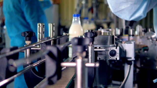 a fast sequence of full milk bottles fetched after production. - lattaio video stock e b–roll