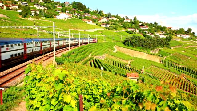 fast tilt train passing vineyard near Lac Leman video