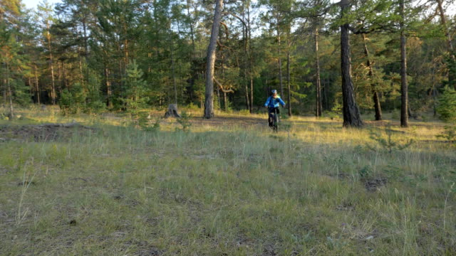 fat bike also called fatbike or fat-tire bike in summer riding in the forest. - bike tire tracks video stock e b–roll