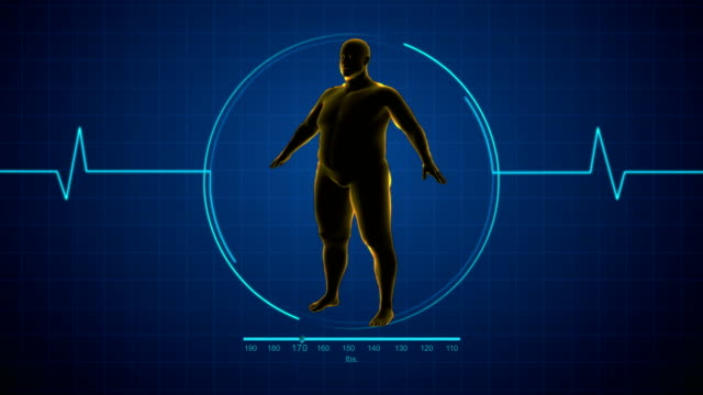 Fat man to Fit man or healthy man Fat to fit human x-ray rotating fat nutrient stock videos & royalty-free footage