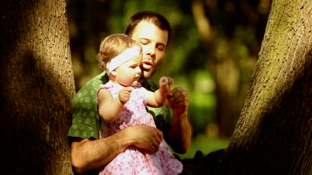 Father and baby playing in the park. video