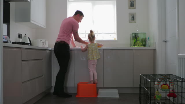 Father And Daughter Cleaning Up A little girl standing on a stepping stool in the kitchen so she can see the sink and help father clean up. cabinet stock videos & royalty-free footage