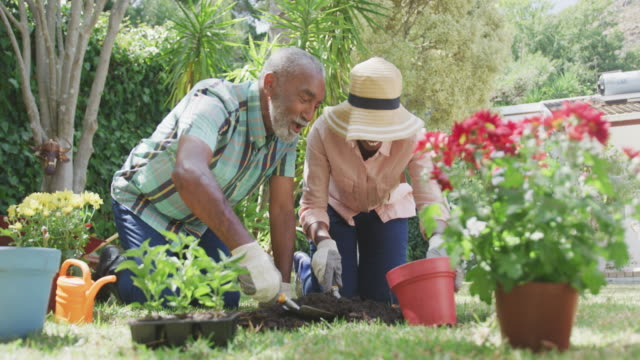 Father and daughter gardening during a sunny day
