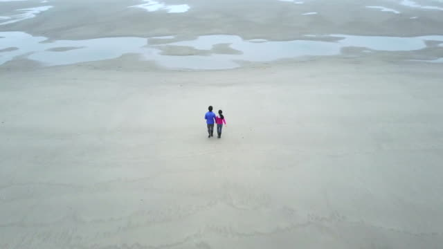 Father and daughter holding hands walking on the beach video