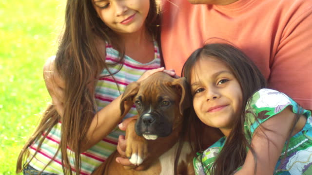 A father and his little girls sit in a park with a boxer puppy. video