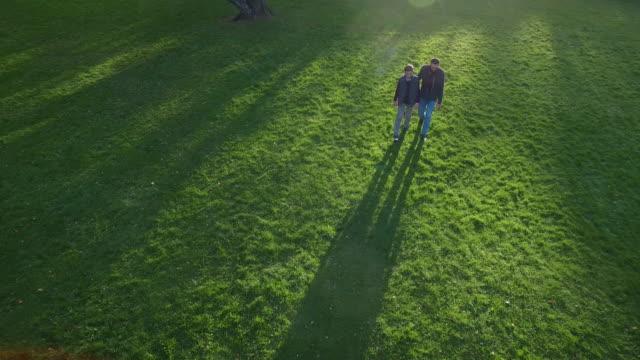 父と息子が公園でウォーキングです。美しい晴れた日。 - 息子点の映像素材/bロール