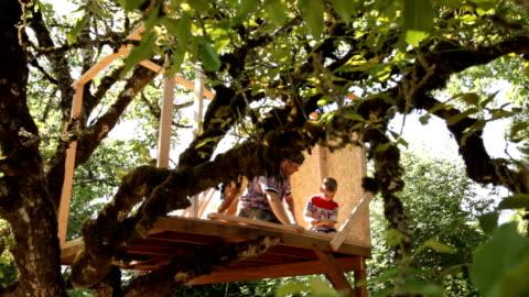 vídeos y material grabado en eventos de stock de padre e hijo construyendo tree house - construir