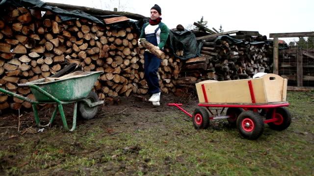 baba ve oğul çalışkan kırsal - şömine odunu stok videoları ve detay görüntü çekimi