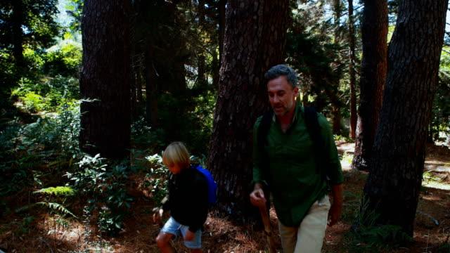 父と息子を森の中の木の棒とのハイキング ビデオ