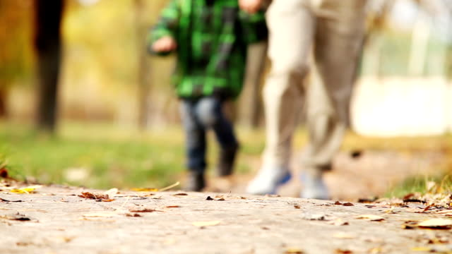 Father and son Jogging in Autumnal park video