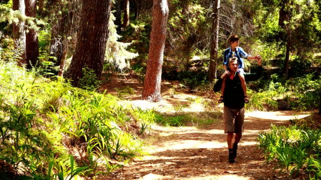 父と息子が公園で自然を見て ビデオ