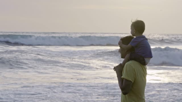 father and son looking at ocean waves - giuntura umana video stock e b–roll