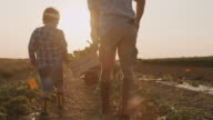istock SLO MO Father and son picking vegetables in the field 1255665945