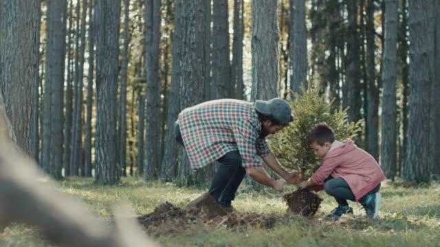 Vater und Sohn pflanzen einen Baum – Video