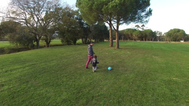 Father and Son Playing Chasing a Ball Aerial View video