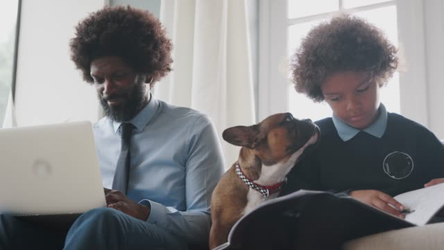father and son sitting on the sofa at home working with their pet dog sitting between them, low angle, close up - bambino cane video stock e b–roll