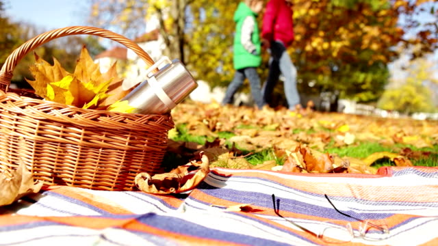 Father and son take a walk in the park on a beautiful autumn day: basket with a thermos sits in the foreground video