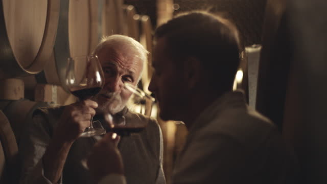 Father and son tasting wine in wine cellar
