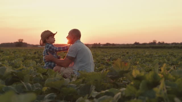 SLO MO Father and son working in a field at sunset