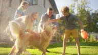istock Father, Daughter, Son Play With Loyal Golden Retriever, Dog Tries to Catch Water from Garden Water Hose. Family Spending Fun Outdoors Time Together in Backyard. Golden Hour Sunset. Slow Motion Shot 1270256877