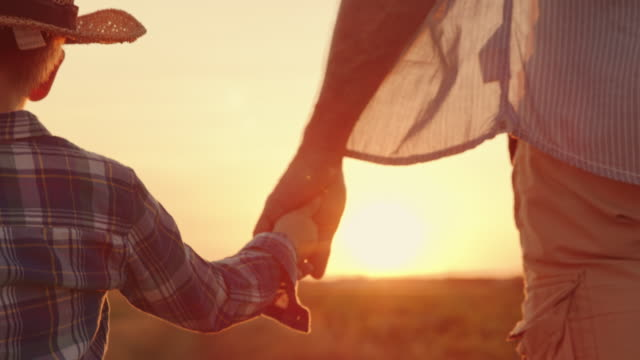 vidéos et rushes de slo mo père tient la main de son fils comme ils marchent à travers le champ au coucher du soleil - père