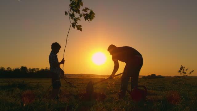 vídeos de stock, filmes e b-roll de pai de ds, plantando uma árvore com seu filho - voluntário