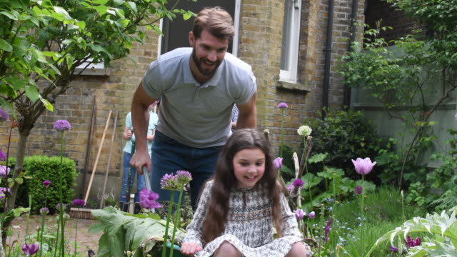 Father pushing daughter in wheelbarrow in garden video